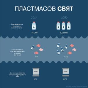 infografica_08