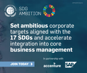 SDG Ambition Digital Ad 1